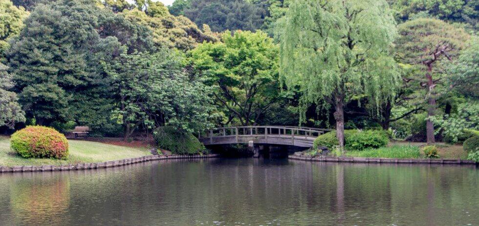 Shinjuku Garden Tokyo Japan